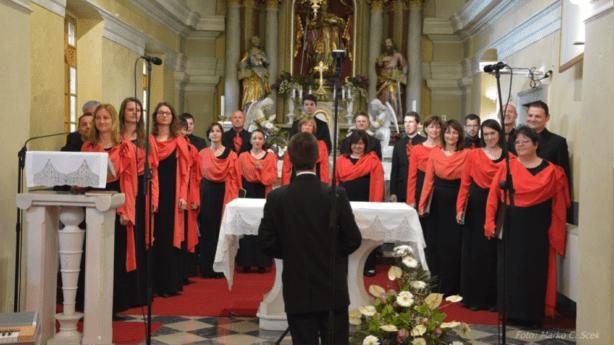 Slika 1: Komorni zbor Ipavska pred nastopom. Foto: Marko C. Scek